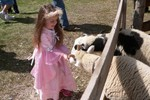 Samantha has grown up so much!  She really enjoyed feeding the sheep, even though they got a little pushy.
