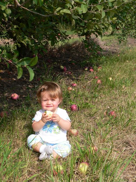Samantha LOVES apples!